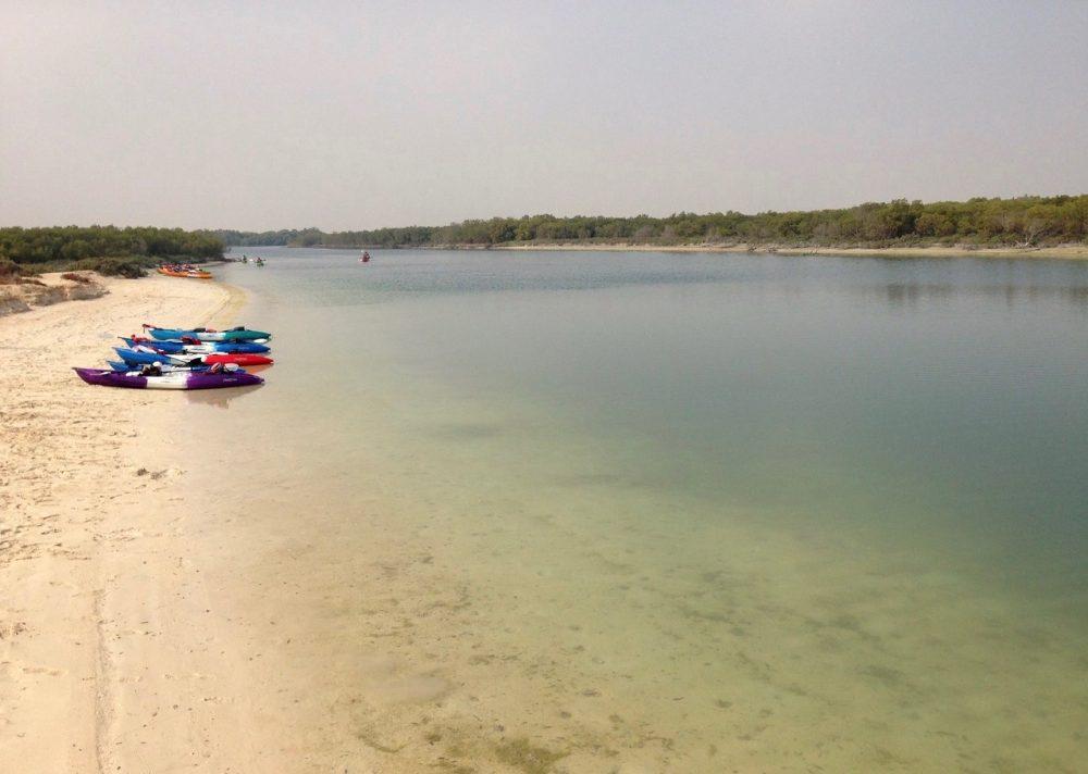 Kayaking in Eastern Mangrove Forest in Abu Dhabi
