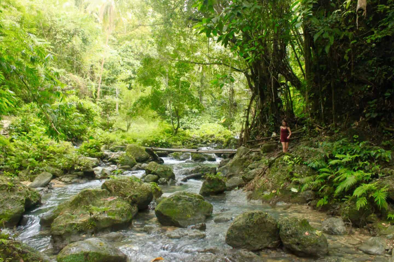 Exploring Kawasan Falls Cebu