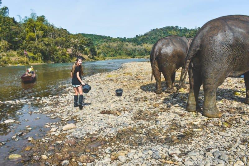 Washing the elephants at Mandalao