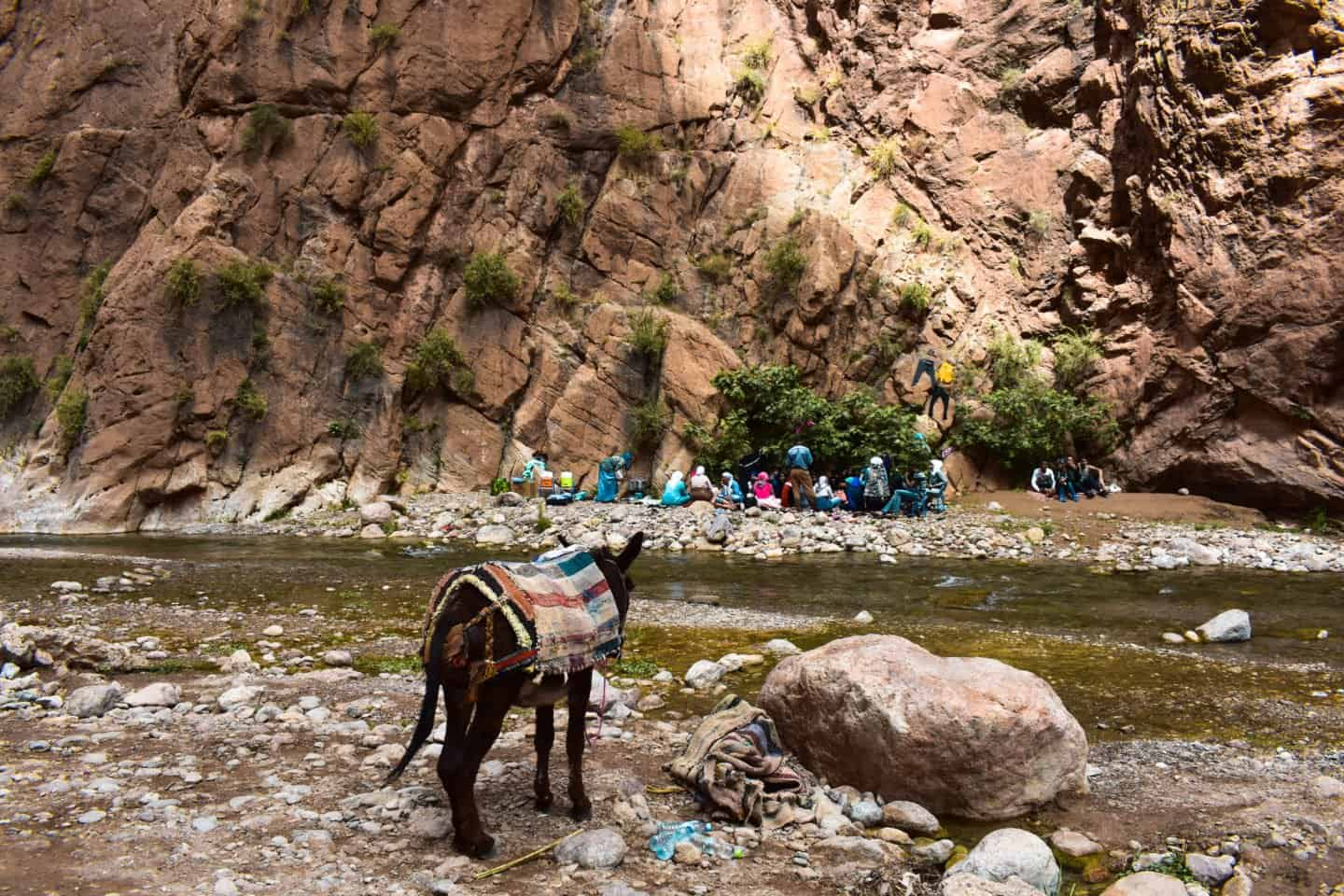 the Todra Gorge Morocco