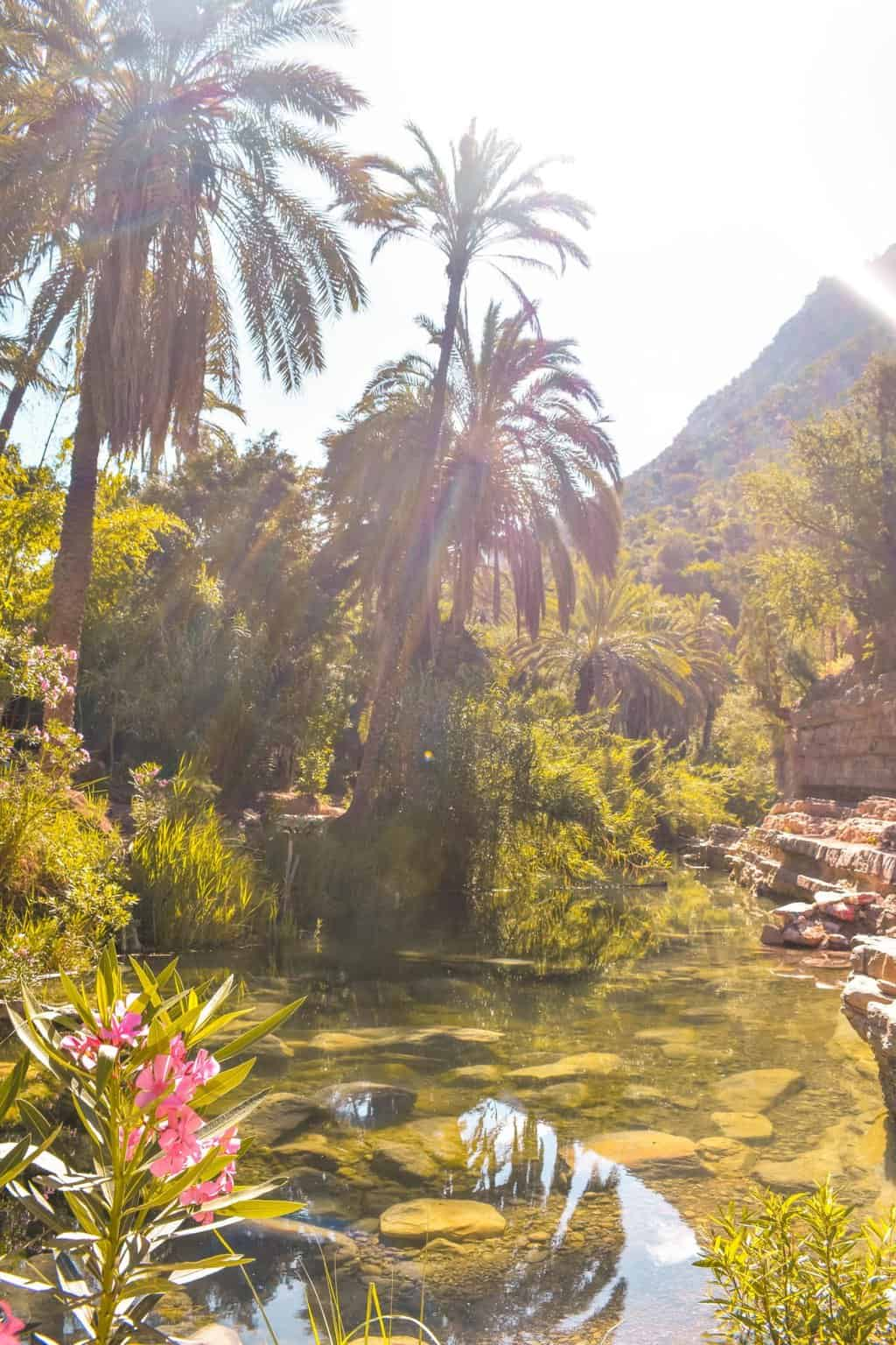 Visiting Taghazout and Paradise Valley