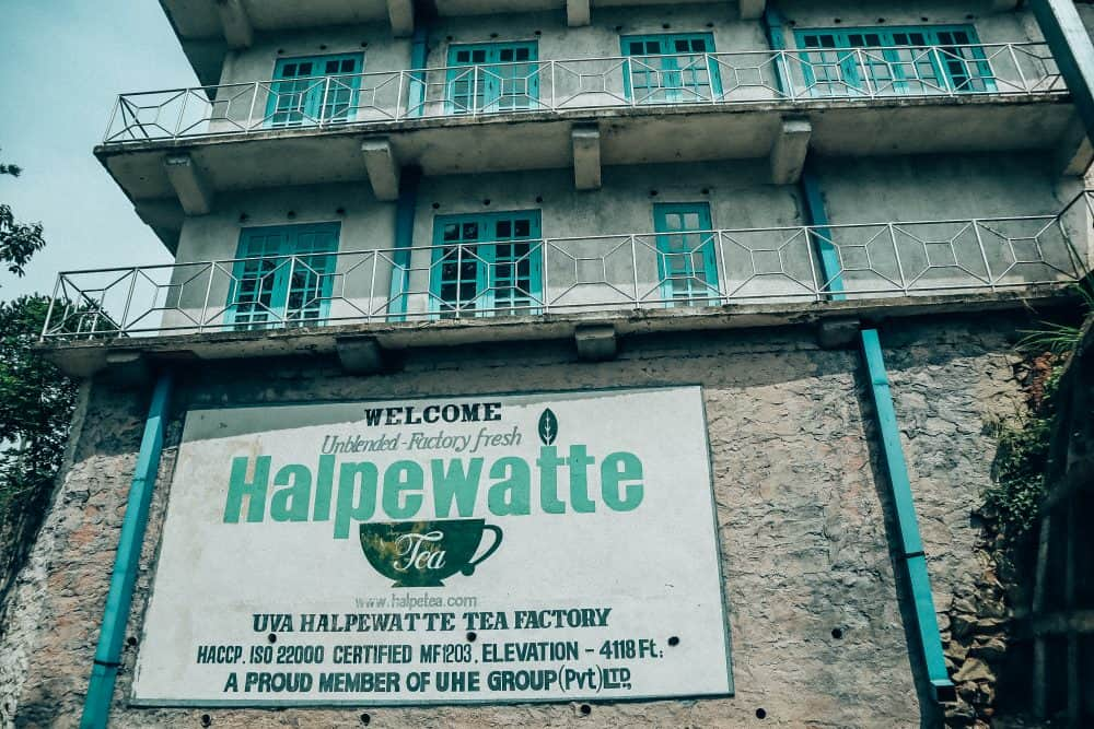 Visiting Halpewatte Tea Factory in Ella