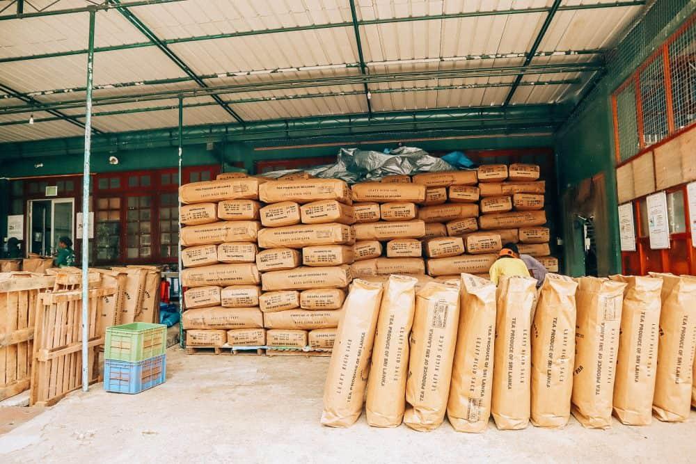 visiting a Tea Factory in Ella