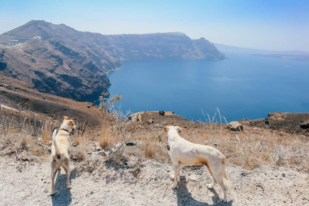 hiking from Oia to Thira in Santorini