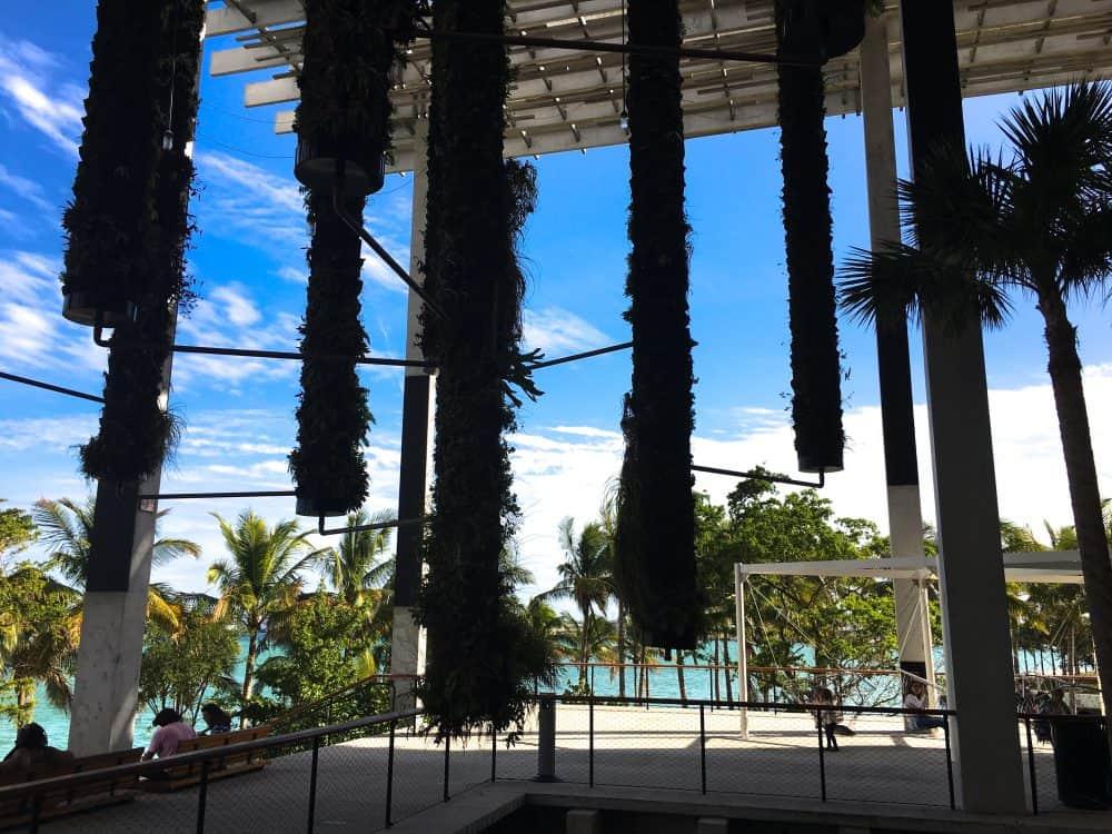 Museum Park terrace