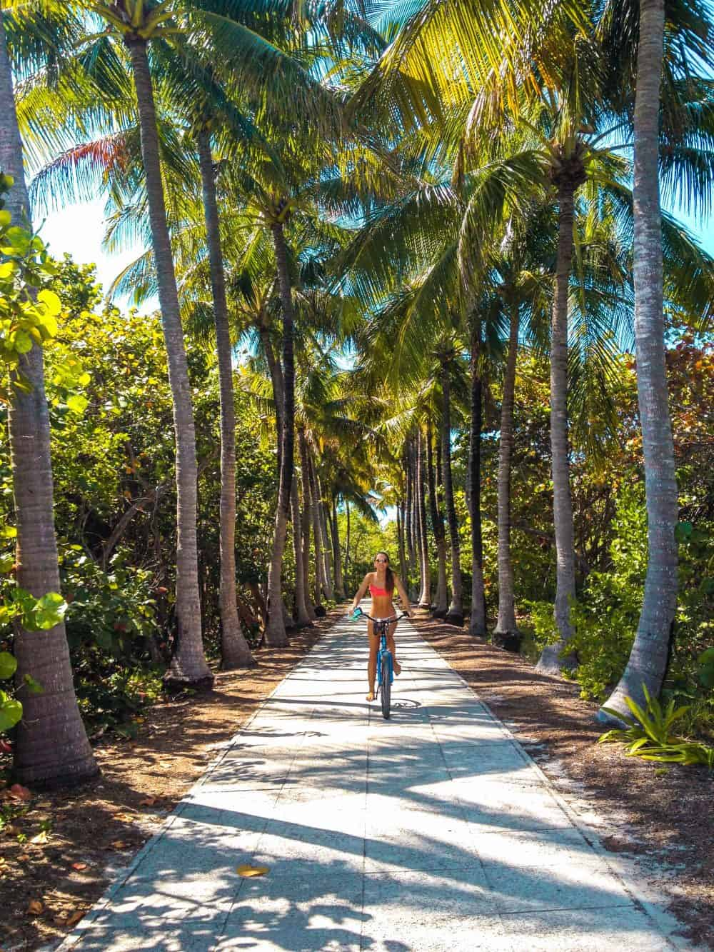 Cycling in Key Biscayne