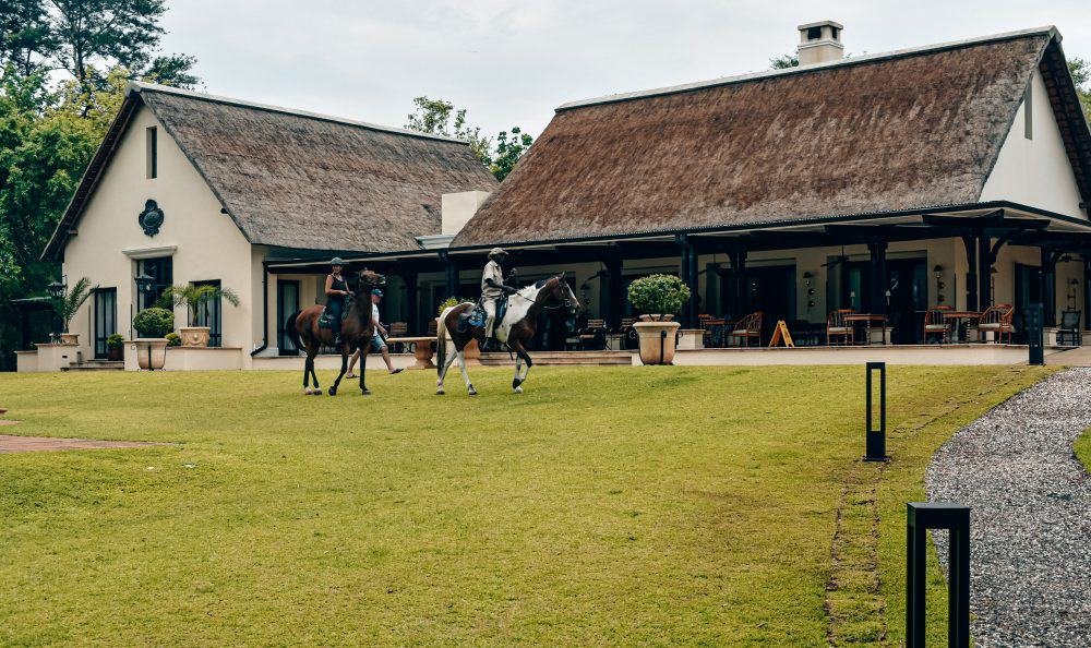 Horses at the Royal Livingstone Hotel on the Zambia side