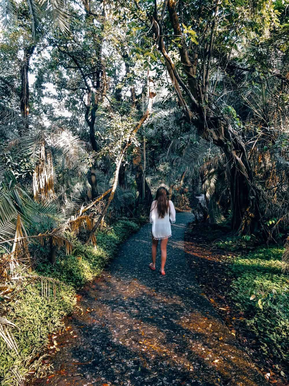 Walking through Victoria Falls National Park in Zimbabwe