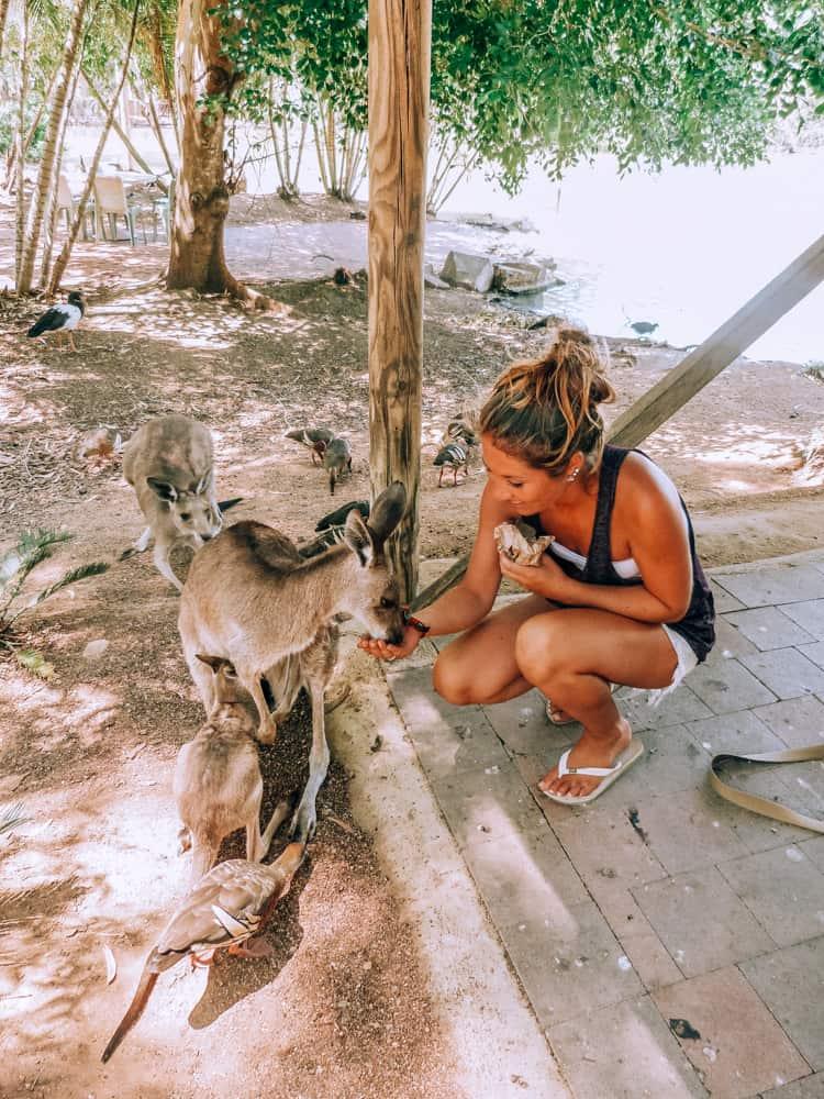 Activites to do on the East Coast Australia