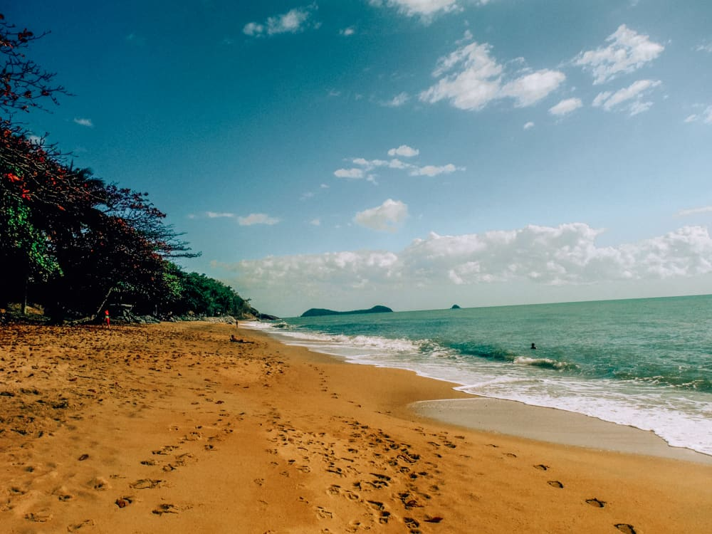 Drive from Cairns to Cape Tribulation