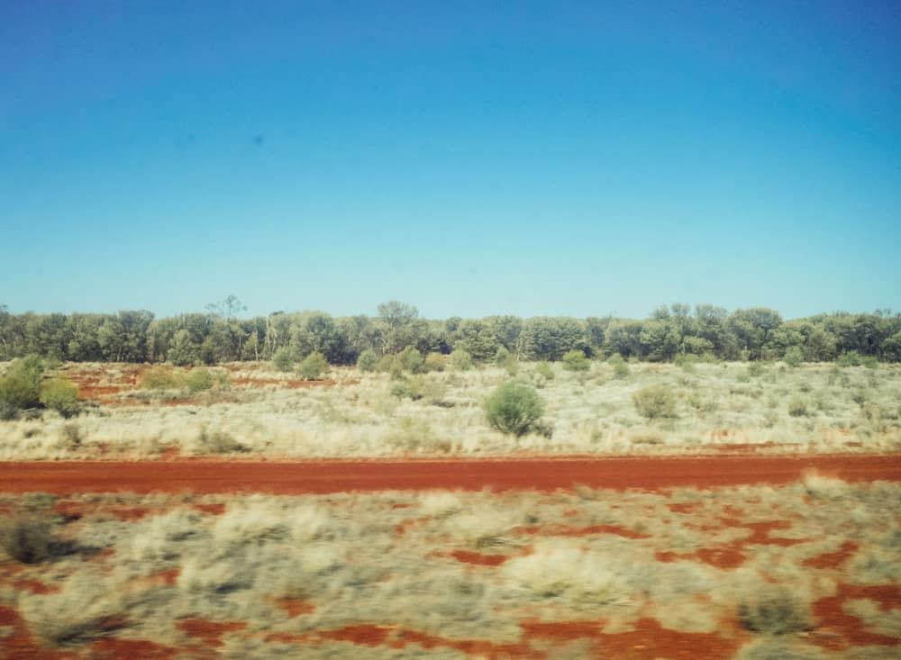 Taking in the view from the train travelling from Darwin to Alice Springs