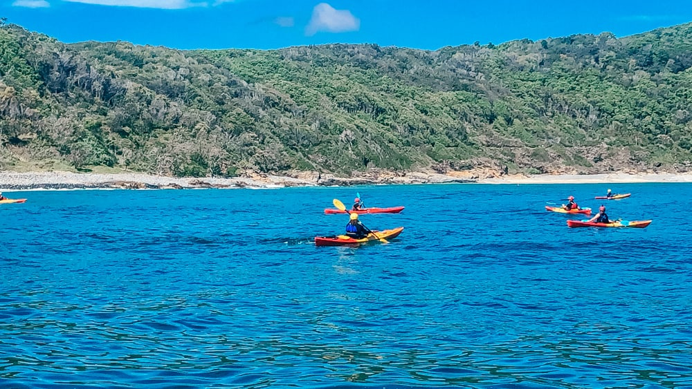 Kayaking in Noosa