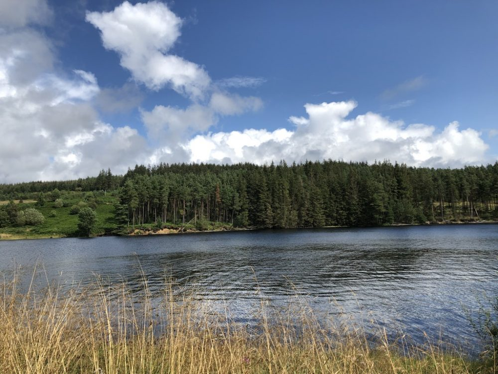 The stunning area of Kielder in Northumberland