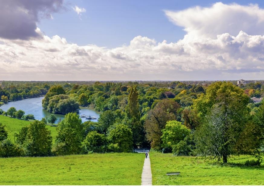 Stunning Richmond Park