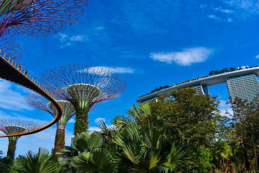 Exploring the beautiful Gardens by the Bay Area under bright blue skies in May