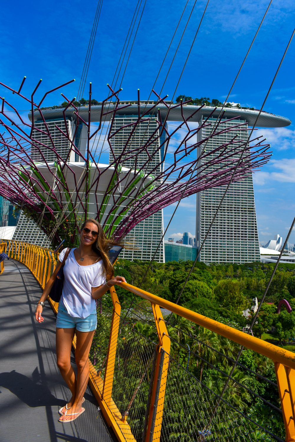 Exploring the OCBC Skyway amongst the Supertree Grove in Singapore