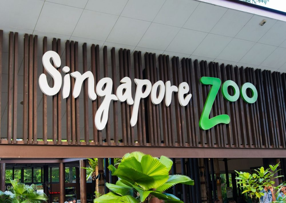 Singapore Zoo entry