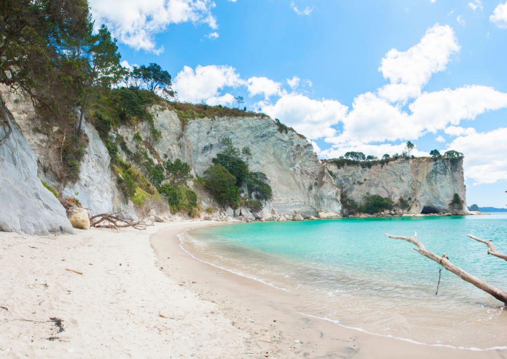 Stunning Cathedral Cove in the Coromandel Peninsula