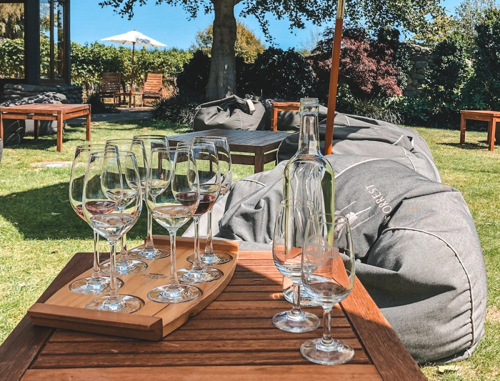 Sampling wines in the Marlborough Wine Region