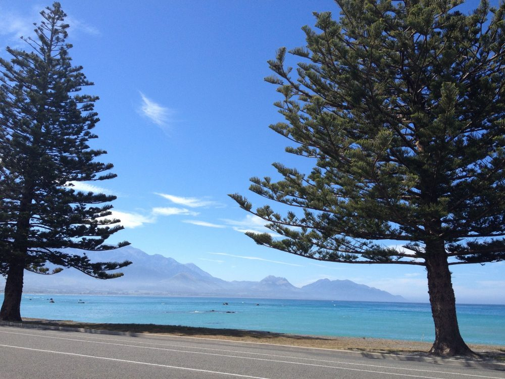 Best Places to Visit on South Island in New Zealand